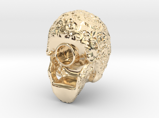 Modell-2-Scull an 80330 in 14k Gold Plated Brass