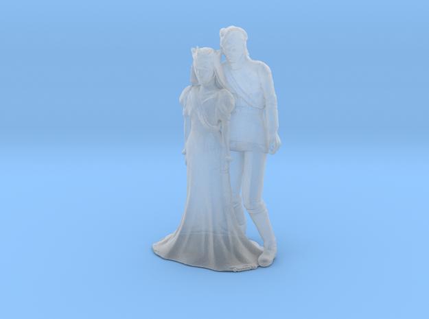 Printle C Couple 120 - 1/87 - wob