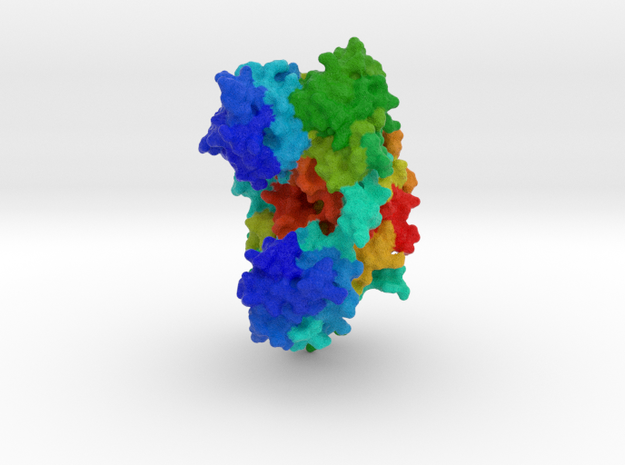Histidyl-tRNA Synthetase in Full Color Sandstone