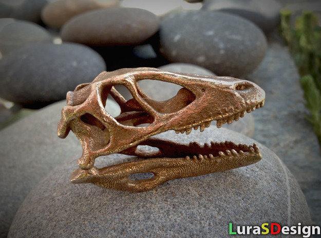 Mini Raptor Dinosaur Skull in White Natural Versatile Plastic