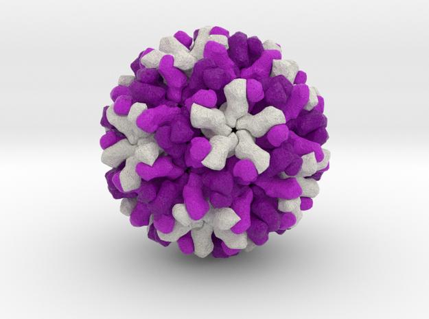 Norwalk Virus in Full Color Sandstone