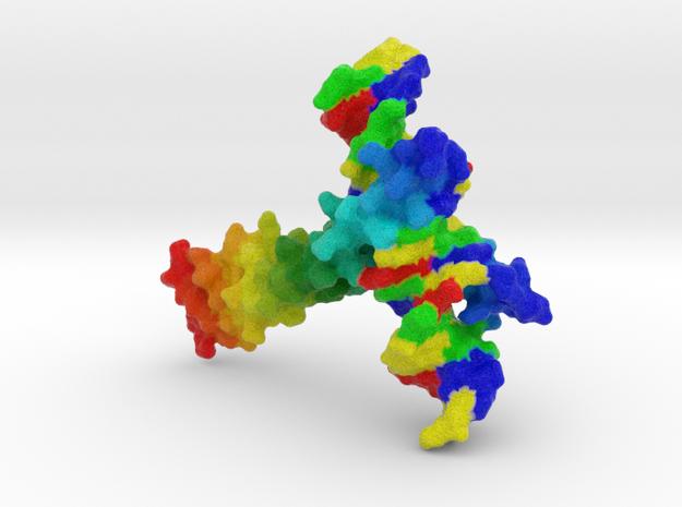 CREB Bound to DNA in Full Color Sandstone