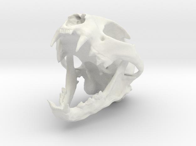 Bobcat Skull - Open Jaw Statue in White Natural Versatile Plastic