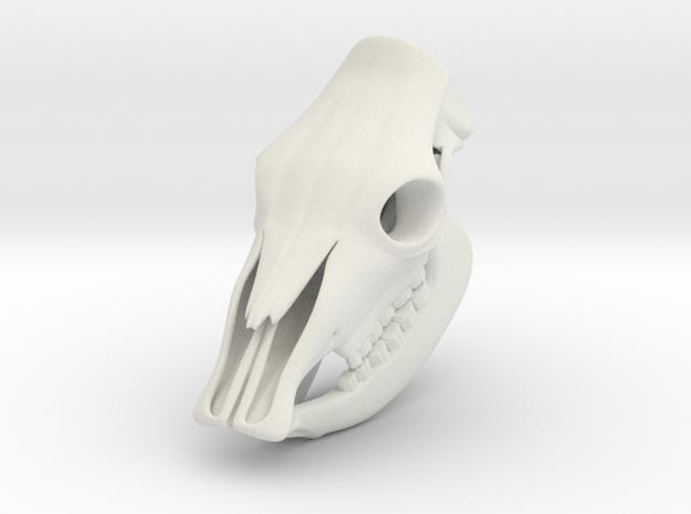 Cow Skull 3D Printed Model in White Natural Versatile Plastic