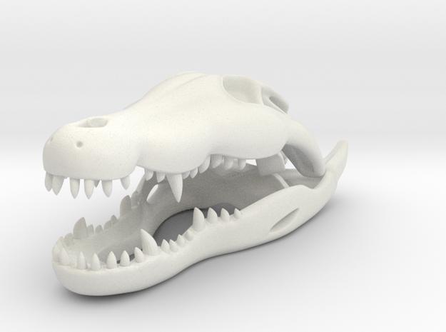 Crocodile skull in White Natural Versatile Plastic