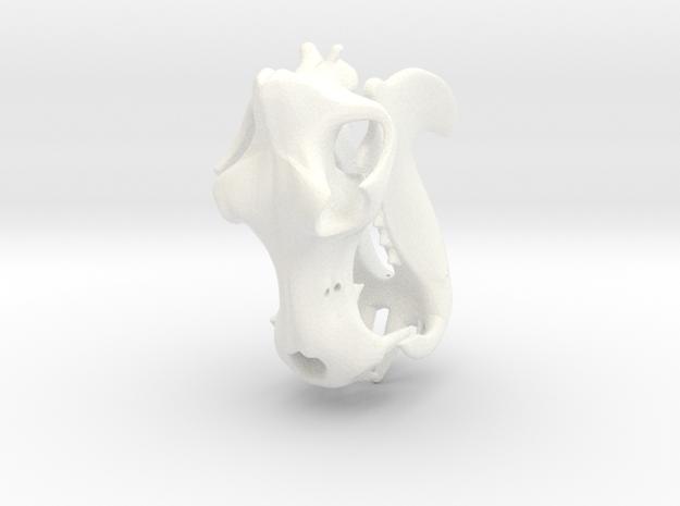 Hippo River Horse Skull in White Processed Versatile Plastic