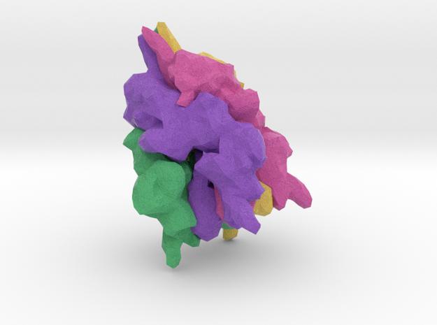 Short Transient Receptor Potential Channel 6 in Natural Full Color Sandstone