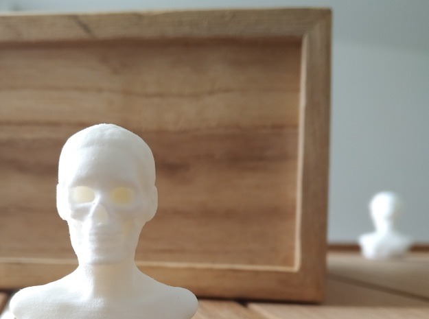 Skull Head in White Natural Versatile Plastic