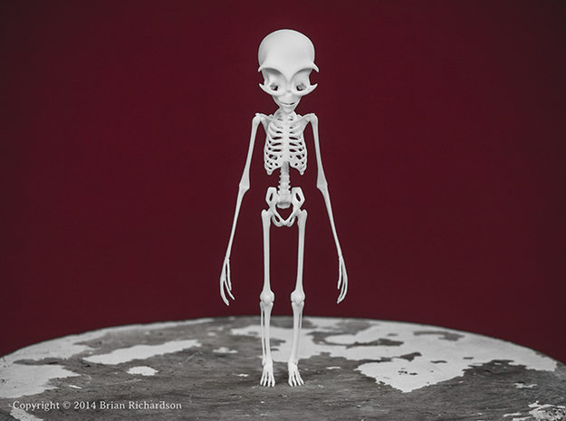 Grey Alien Skeleton in White Natural Versatile Plastic
