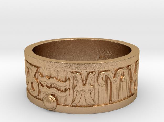 Zodiac Sign Ring Aquarius / 21.5mm in Natural Bronze