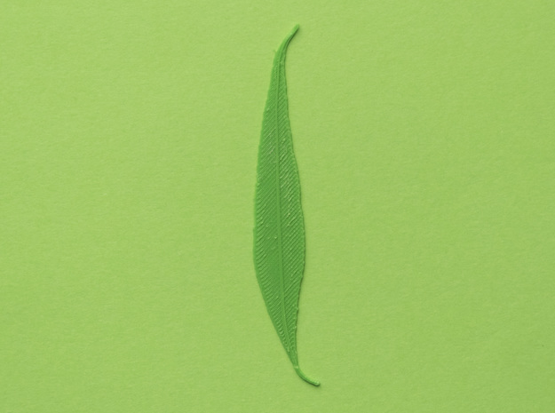 Willow tree leaf in Green Processed Versatile Plastic