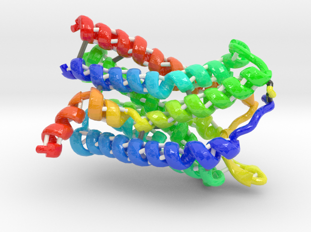 C-C Chemokine Receptor 5 (Large) in Glossy Full Color Sandstone