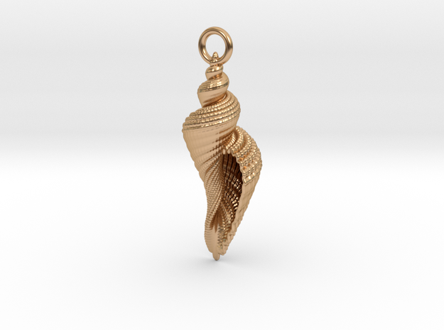 Shell Pendant in Polished Bronze