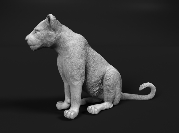 Lion 1:20 Sitting Cub in Smooth Fine Detail Plastic