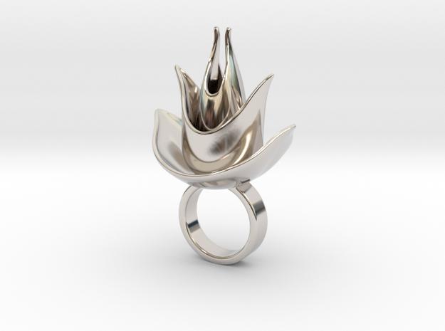 Emperato in Rhodium Plated Brass
