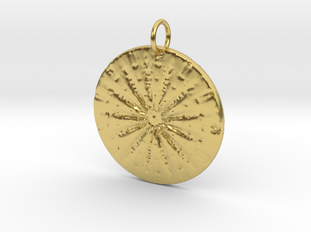 Native Sand dollar in Polished Brass: Medium