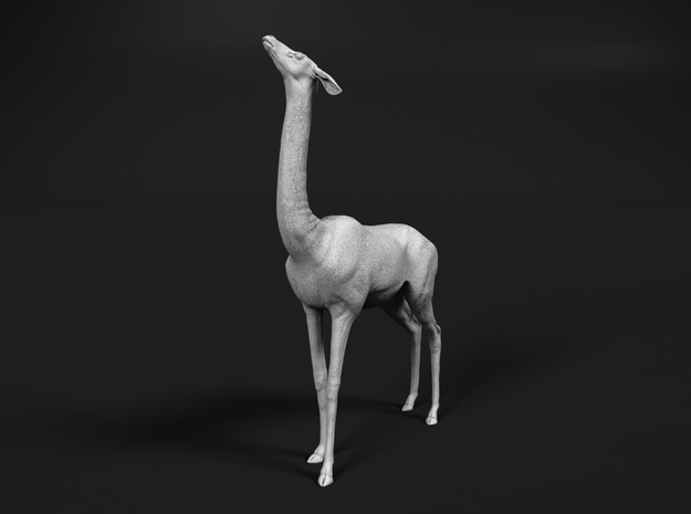 Gerenuk 1:20 Female feeding on four legs in White Natural Versatile Plastic
