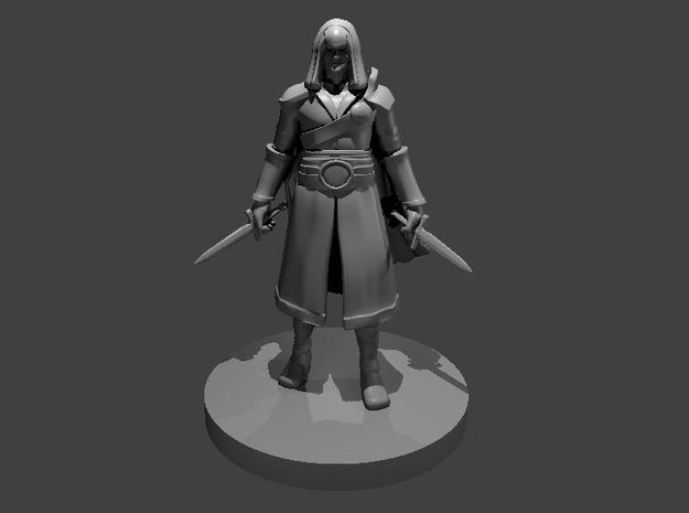 Human Rogue 4 -  Assassin in Smooth Fine Detail Plastic