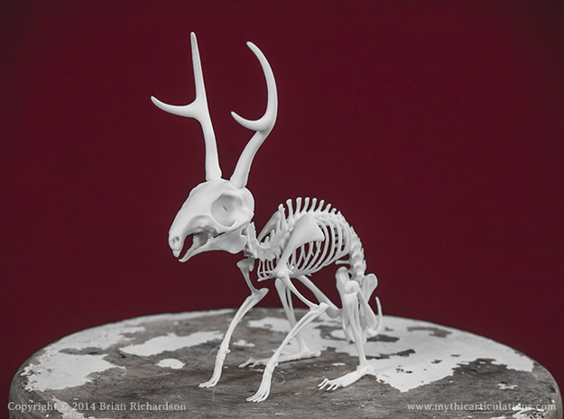 Jackalope Skeleton in White Strong & Flexible