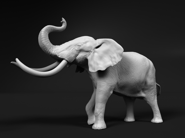 African Bush Elephant 1:48 Aggressive Male in White Natural Versatile Plastic