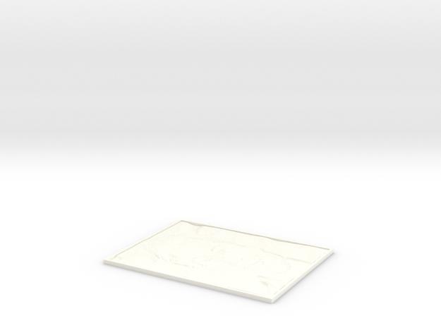 Elon Musk Lithophane in White Processed Versatile Plastic