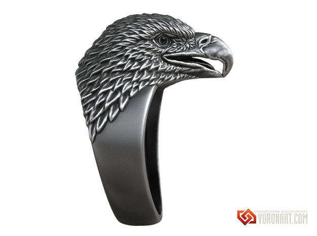 Eagle head ring bird jewelry in Natural Brass: 10 / 61.5