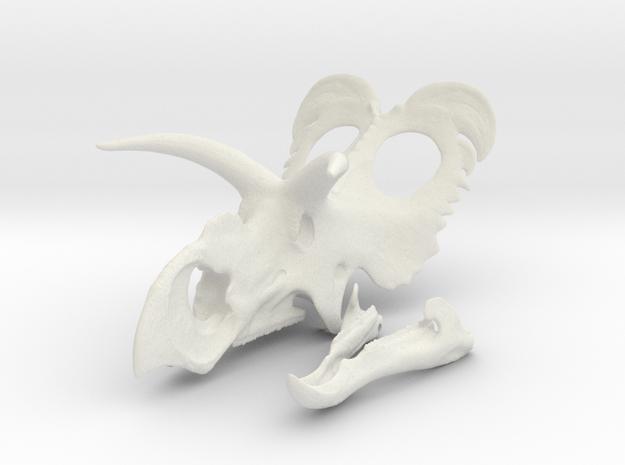 Medusaceratops Skull- 1/18th scale replica in White Natural Versatile Plastic
