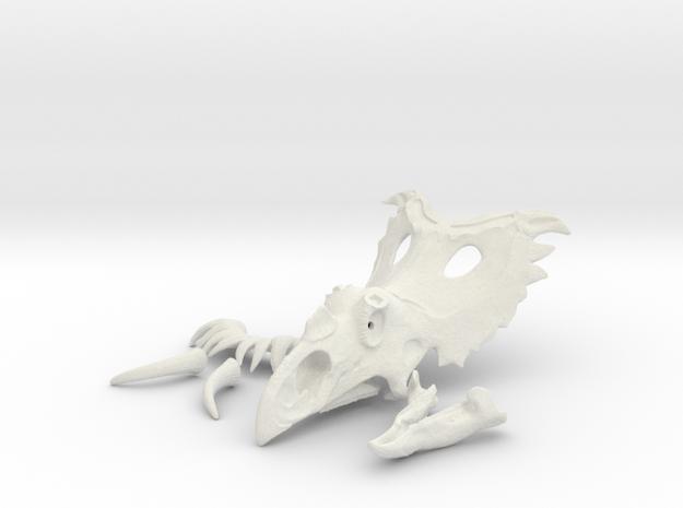 Kosmocertops Skull in White Natural Versatile Plastic