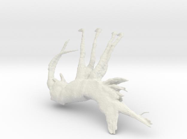 Shrimp, 100mm version in White Strong & Flexible
