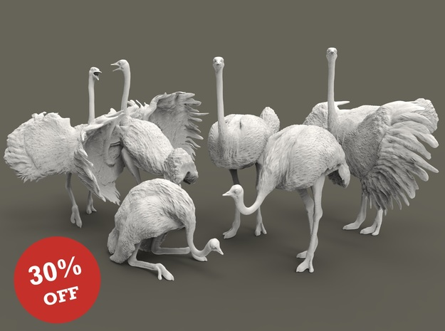 Ostrich Set 1:87 five different pieces in Smooth Fine Detail Plastic