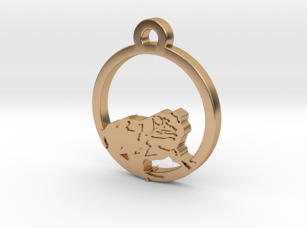 Frog Charm Necklace n93 in Polished Bronze