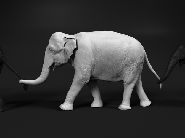 Indian Elephant 1:48 Female walking in a line 3 in White Natural Versatile Plastic
