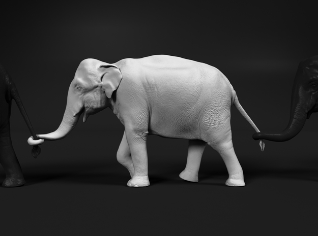 Indian Elephant 1:48 Female walking in a line 2 in White Natural Versatile Plastic