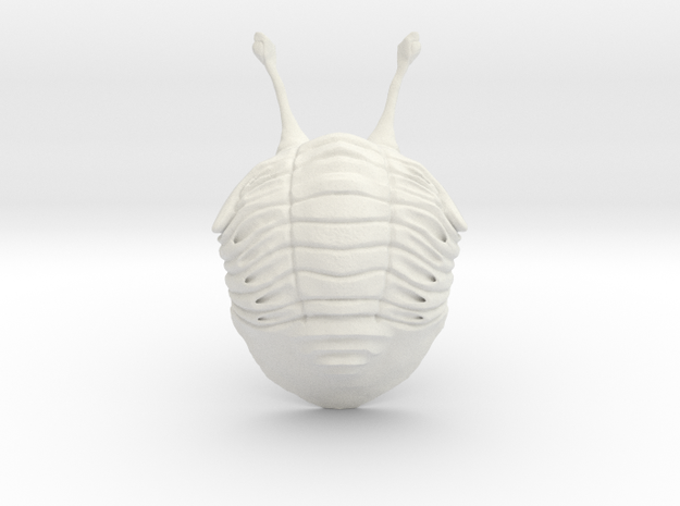 Stalk Eyed Asaphus Kowalewskii (no stand) in White Natural Versatile Plastic