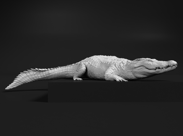 Nile Crocodile 1:48 Smaller one on river bank in Smooth Fine Detail Plastic