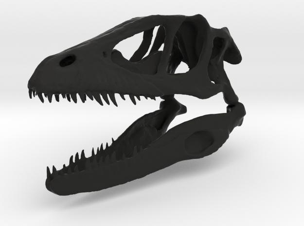 Dinosaur skull in Black Natural Versatile Plastic