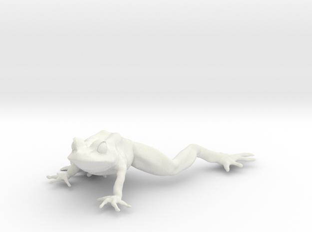 12.9 cm frog 3d printed