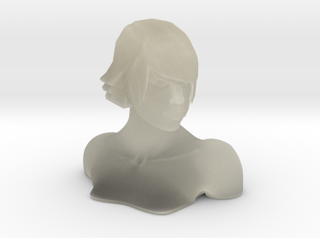 1:6 Female Bust 3d printed