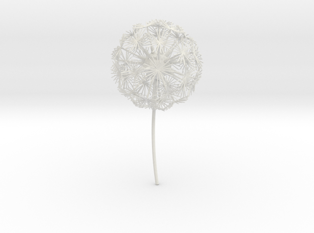 Dandelion abstract art piece in White Natural Versatile Plastic