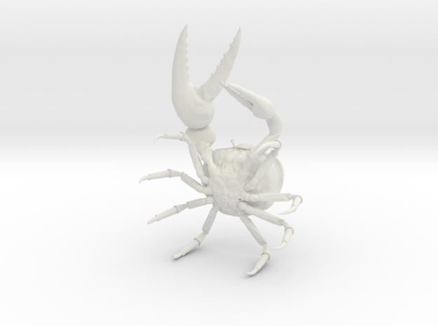 Fiddler Crab - Small in White Natural Versatile Plastic