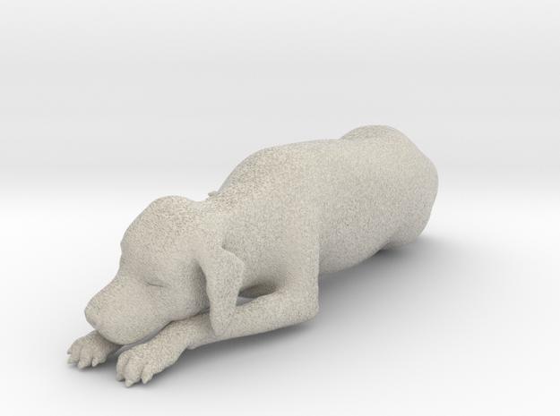 Sleeping Dog - Labrador Small