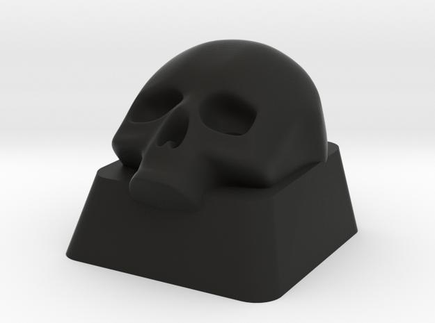 Key Lower Skull