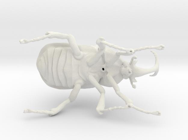 Flamboyant flowerbeetle  in White Strong & Flexible