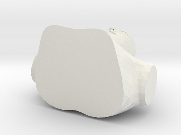 Torso 001 in White Strong & Flexible