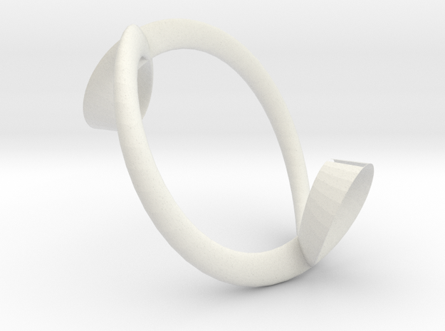 Cycloidal Torus 3d printed