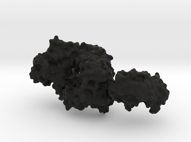 Antibody Fab and Antigen molecule 3d printed