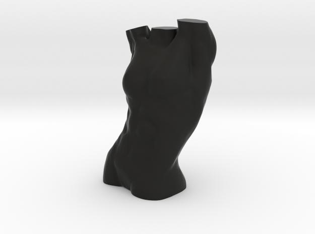 Female Torso 3d printed