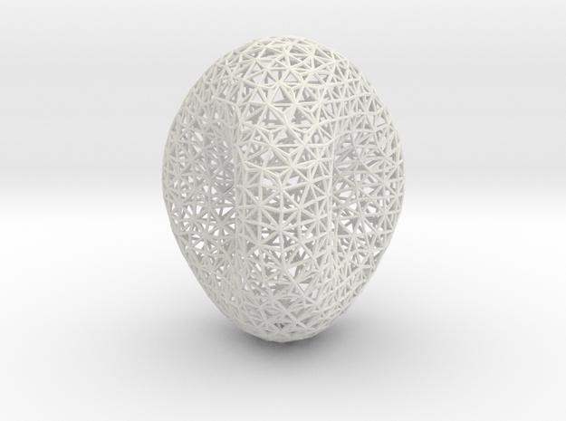 Genus 2 surface mesh in White Natural Versatile Plastic