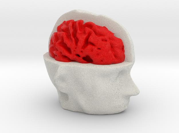 Half Brain 3d printed