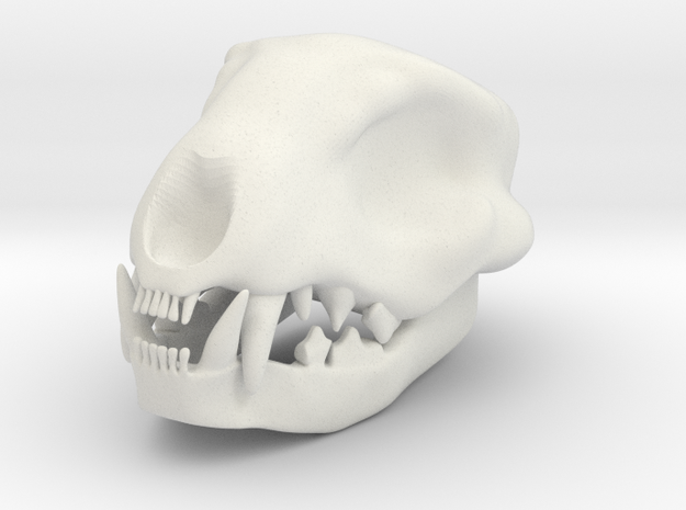 Cat Skull 2 Inch in White Natural Versatile Plastic